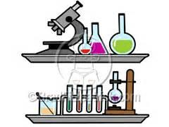 Ap bio essay sample answers